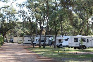 BIG4Renmark caravans 300x200
