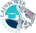 LadybowerFisheries logo