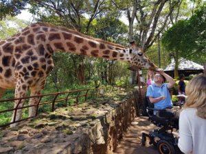 Nairobi Giraffe Centre John Morris 510x382 300x225