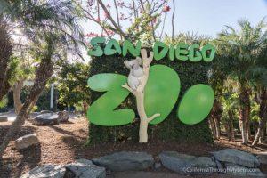 san diego zoo 1 640x427 300x200