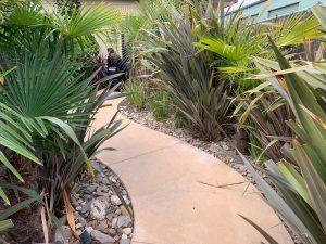 NZA Example of Pathways 300x225