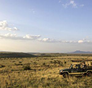 Lorna Safaris open plain 300x288