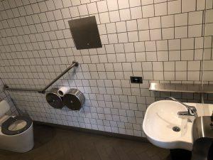 capital toilet 2 300x225