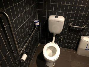 dendy toilet 300x225