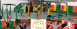 shine shed 300x114