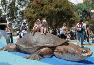 BibraLakePlayground turtlething 300x209