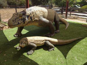 Canberra Reptile Park 2 300x225