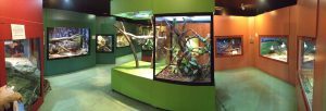 Canberra Reptile Park 3 300x102