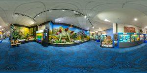 National Dino Museum 1 300x150