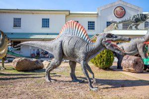 National Dino Museum 3 300x200
