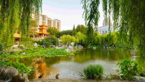 ChineseGarden lake 300x169