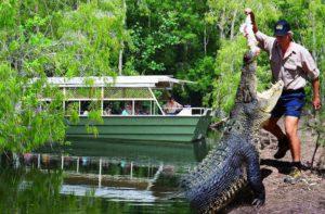 HartleysCrocodileAdventures banner 300x197
