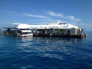 ReefMagicCruises MarineWorld 300x225