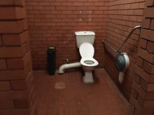 silvan lower unisex disabled toilet 300x225