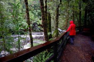 Franklin GordonWildRivers trail 300x200
