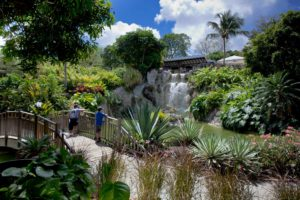 gallerie du jardin botanique deshaies 131 300x200