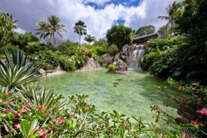 jardin botanique deshaies guadeloupe 11 300x200