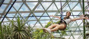 cairns zoom and wildlife dome zipline 300x132